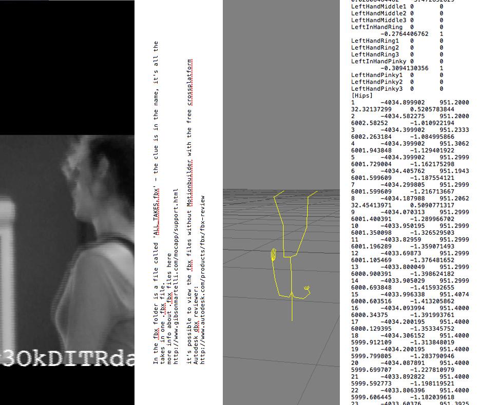 Motion Capture Files